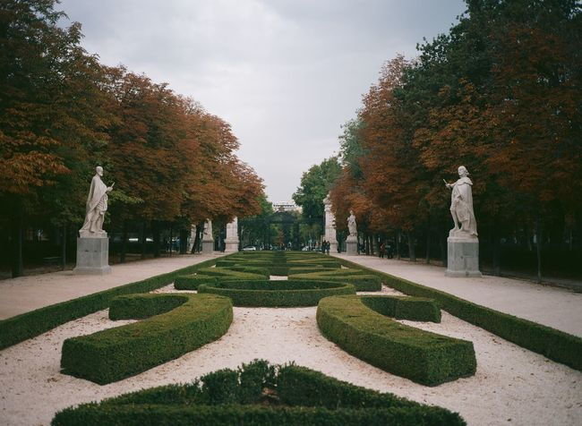 El Retiro Park in Madrid, Spain. Architecture Art Building Exterior Built Structure Creativity Formal Garden Growth Human Representation Madrid No People Outdoors Park Park - Man Made Space Sculpture Shadow Sky SPAIN Statue Sunlight Travel Destinations Tree