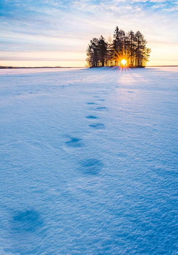 Finland Lapland Winter Cold Temperature Polar Circle Sunset
