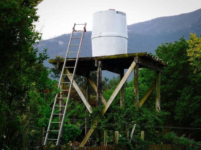 Jojo Water Tank ~ Tree Storage Tank No People Industry Day Outdoors Water Garden Photography Africa Healthy Lifestyle Western Cape African Nature Ladder To Nowhere Ladder Natural Vegetations From My Point Of View Rain Water Storage Wood - Material Platform
