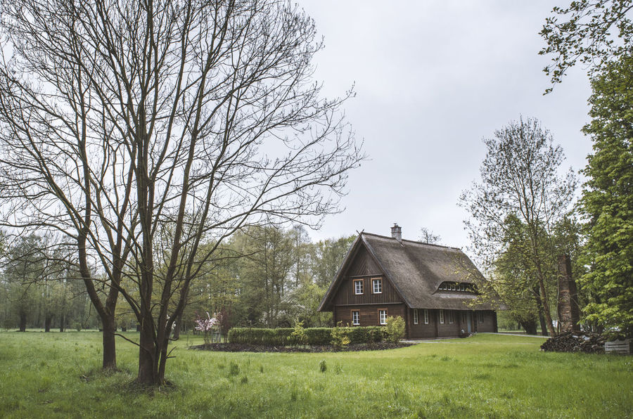 Mystic Spreewald Architecture Bare Tree Beauty In Nature Branch Building Exterior Built Structure Cottage Day Field Grass Growth Holiday House Mystery Nature No People Outdoors Sky Spreewald Thatch Thatched Roof Tranquility Travel Destinations Tree UNESCO World Heritage Site