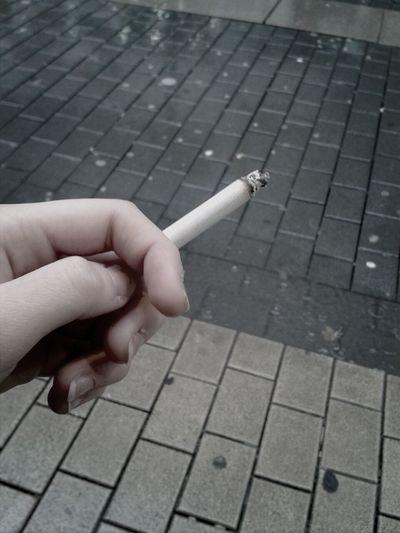 Hausverbot Im Streichelzoo Zigarette