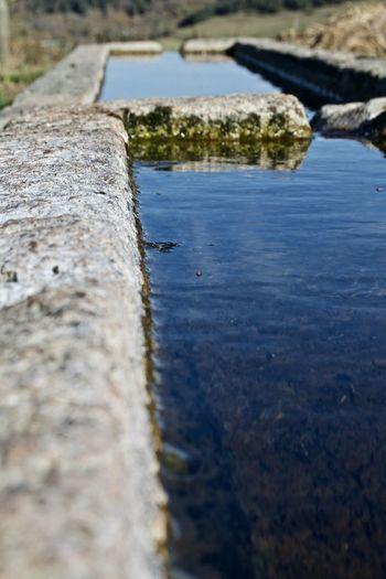Surface level of rocks on shore