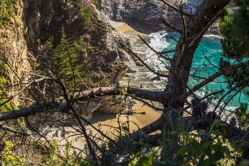 The Big Sur Adventure Series - The Promised Land: A Sneak Peek of McWay Falls Through the brush and trees, the awe-inspiring scene that is McWay Falls is not yet revealed, but as you make your way along the cliffside path, its beauty begins to strike you in glimpses and glances. Tree Nature Beauty In Nature Outdoors Tranquility Water Scenics Day No People Branch Mountain Cliff Seascape Big Sur Tranquil Scene Coastline Adventure Beautiful Nature Idyllic Hidden Gems  Sea Beach Beautiful Through The Trees Landscape Miles Away