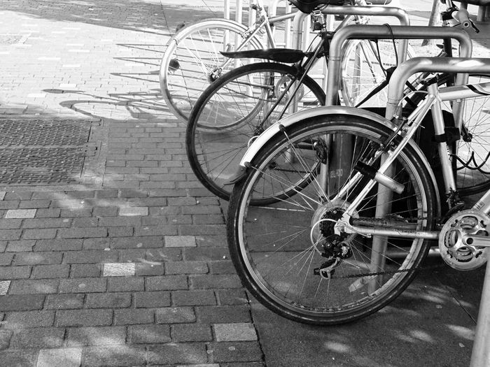 Bicycle Bike Bike Rack Bikes Blackandwhite Blackandwhite Photography Cobblestone Day High Angle View Land Vehicle Metal Mode Of Transport No People Outdoors Railing Sidewalk Stationary Street Sunlight Tire Transportation Wheel