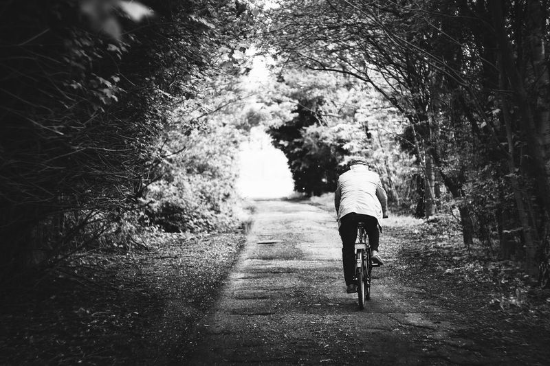 Exceptional Photographs Silhouette Poland Black And White Black & White Blackandwhite Photography Tree Full Length Men Rear View Road The Way Forward Bicycle vanishing point Pathway Riding