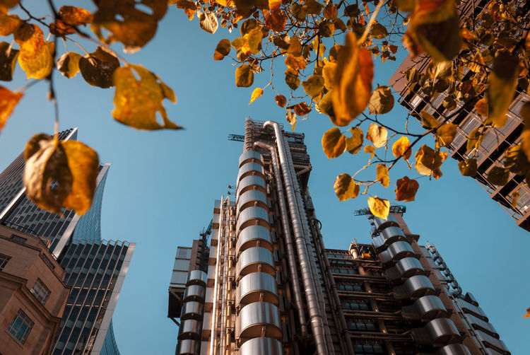 Low angle view of buildings against sky during autumn