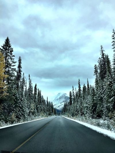 Canadian Rockies  IPhoneography Canada Tree Cloud - Sky Plant Road Sky Transportation Nature The Way Forward Direction No People Beauty In Nature Day Snow Diminishing Perspective Tranquility Winter Tranquil Scene Cold Temperature Coniferous Tree Pine Tree