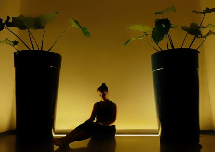 Silhouette YellowBackground Day EyeEmBestPics EyeEm Best Edits EyeEmNewHere EyeEm Gallery Low Angle View Plants 🌱 Silhouette Photography First Eyeem Photo Adults Only One Person Indoors  EyeEm Best Shots Only Women Eye4photography  EyeEm Selects