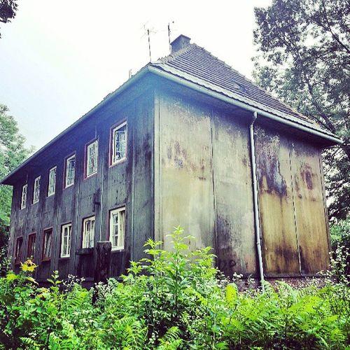 Dom cały ze Stal a nie rdzewieje. Stalowydom zbudowany w 24 dni. Fachura muchaniesiada bobbudowniczy