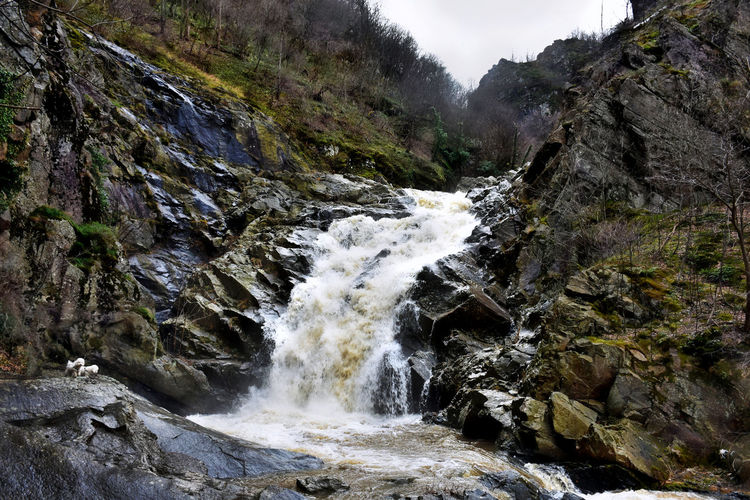 Scenics - Nature Beauty In Nature Rock Water Motion Rock - Object Waterfall Solid Flowing Water Blurred Motion Long Exposure No People Nature Land Rock Formation Day Forest Mountain Power In Nature Outdoors Flowing Stream - Flowing Water