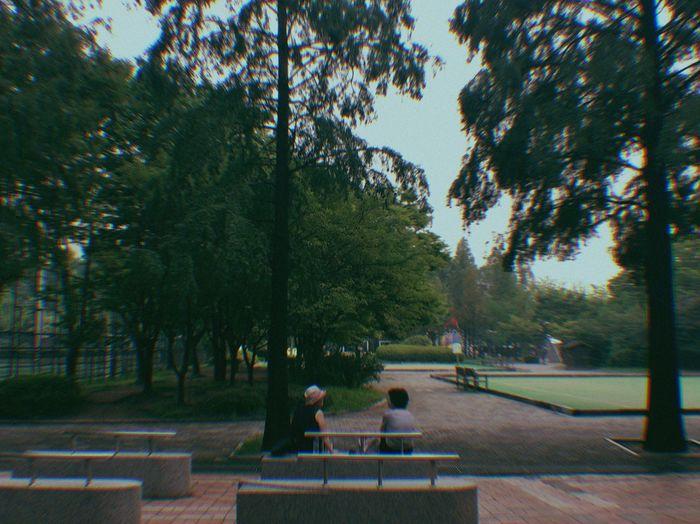 They Together Oldbuddy Talkwith Park Boramae Park Breathing Space