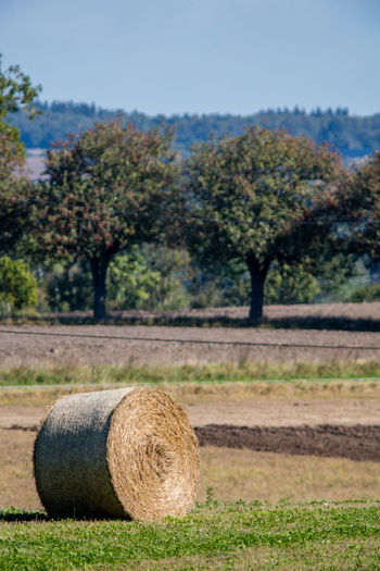 Agriculture Beauty In Nature Countryside Day Field Hay Bales Landscape No People Non-urban Scene Outdoors Scenics Sweden