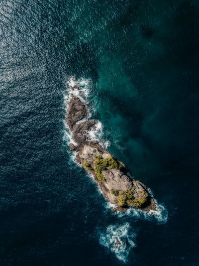 High angle view of rock on sea shore