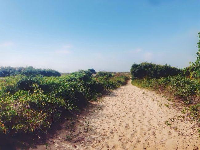 Take me to the beach. EyeEm Best Shots Eye4photography  Taking Photos Beach Vanishing Point Just Around The Corner
