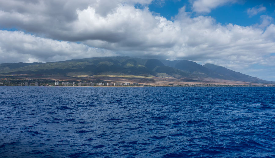 West Maui hills. Hawaii Beauty In Nature Blue Cloud - Sky Day Hill Landscape Mammal Mountain Mountain Range Nature No People Outdoors Scenics Sea Sky Tranquil Scene Tranquility Water