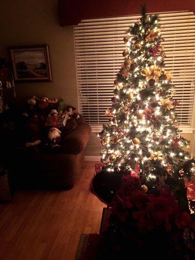 Christmas tree Christmas Tree Christmas