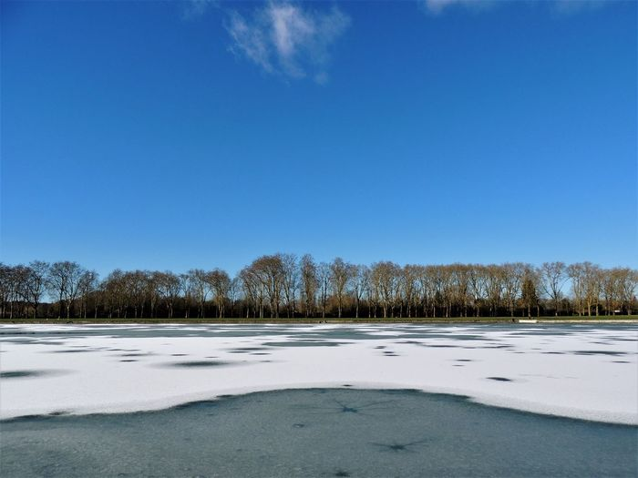 The scenery just outside of the gardens of Chateau Versailles is also stunning. February, 2018. EyeEm Nature Lover EyeEmNewHere France Frozen Lake Ice Nikon Tranquility Versailles Winter Beauty In Nature Cold Day Europe French Gabiandfrance Horizon Over Water Inspiration Lake Nature Outdoors Park Snow Sunny Day Swan Travel Destinations