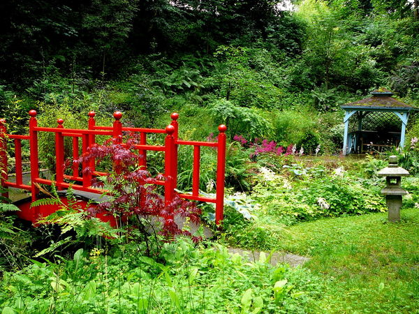 Dragon Bridge ~ Beauty In Nature Chinese Garden Day Garden Path Grass Green Color Growth Nature No People Oriental Style Outdoors Pagoda Building Plant Red Red Paint Stream Tranquility Tree Wood Bridge