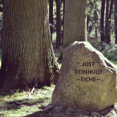 Ivenacker Eichen in Mecklenburg: Einen Baum pflanzen kann jeder. Einen Baum nach sich zu benennen, ist schon seltener.