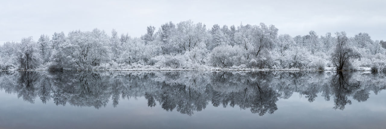 Frost Panorama