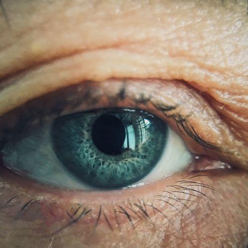The eye.. Iphonephotography Macro Photography Macro Macro Beauty Green Blue Eye VSCO IPS2016Closeup The Still Life Photographer - 2018 EyeEm Awards