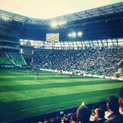 Hajrá Fradi! Hajrafradi Ferencváros Fradi FTC  Groupamaarena Football Firstmatch Match Gameday