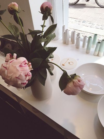 Beautiful ceramic shop in Copenhagen, Denmark Flowers Peonie Relaxing