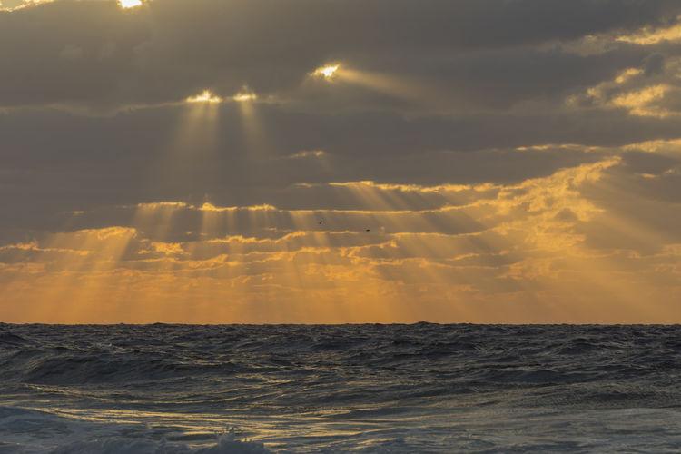 Here comes the sun Seascape Coast Havana Cuba Water Sea Sunset Beach Sun Sky Horizon Over Water Cloud - Sky Landscape Dramatic Sky Low Tide Atmospheric Mood Romantic Sky Moody Sky Meteorology