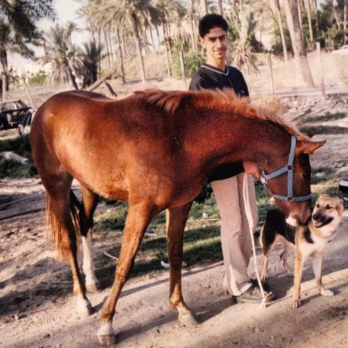 That's Me :) One Animal Looking At Camera Full Length Domestic Animals Mammal Leisure Activity One Animal Lifestyles Transportation Horse Livestock Casual Clothing Person Young Adult Outdoors Looking At Camera Herbivorous Ali علي Mashhad | مشهد