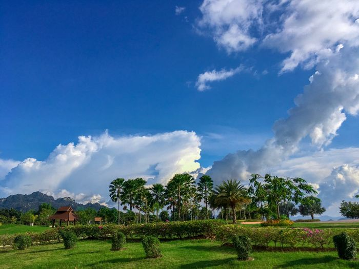 View Sky Cloud