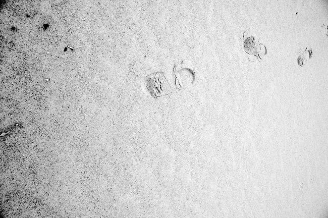 Footprints In The Sand Beach Blackandwhite FootPrint High Angle View Land Pattern Sand Textured  Track - Imprint