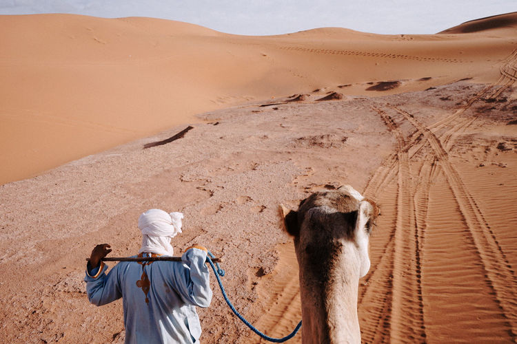 Rear view of people on sand dune in desert