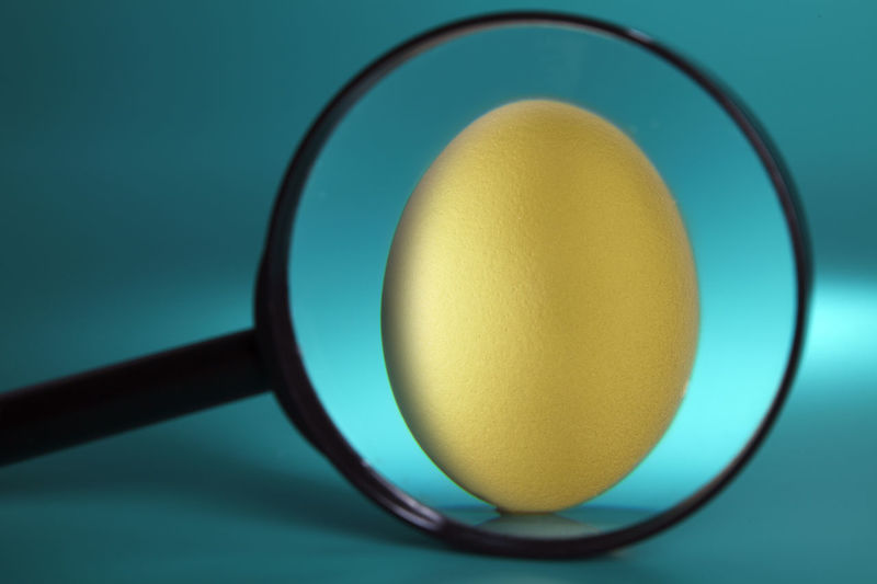 Enlarge Rich Close-up Day Egg Eggs Focus Food Golden Egg Healthy Eating Indoors  Invest Investment Investment Planning Magnifier App No People Still Life Studio Shot Table Valuable Value Wealth Yellow