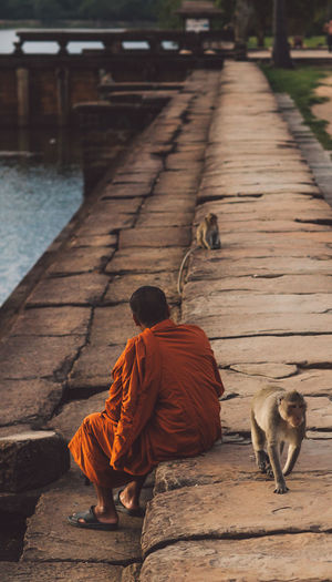 Siem Reap Cambodia Angkor Angkor Wat Angkor Wat, Cambodia Mammal Sitting Vertebrate People Men Religion Full Length Footpath Rear View Real People One Animal Day Outdoors Water Architecture