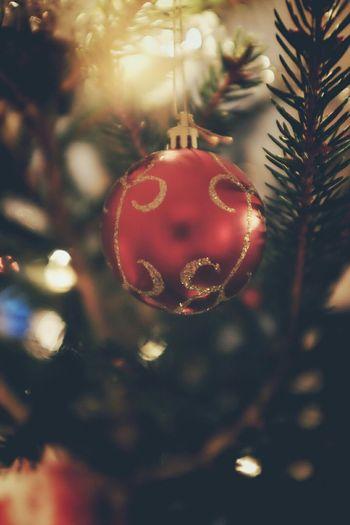 Christmas Tree FUJIFILM X100S Fuji X100s Festive Season