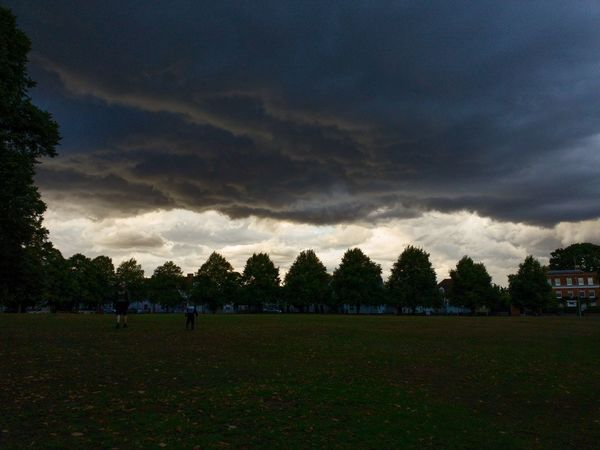 A Storm is Brewing Storm Clouds Nature Sunset Skyline Beautiful Landscape Samsung Galaxy Galaxy S9 Withgalaxy Mobilephotography Epic Silhouette Trees Field Symmetry England Britain Cold White Weather Tree Sky Grass Countryside Lightning Dramatic Sky