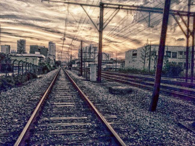 Railway Trains Morning
