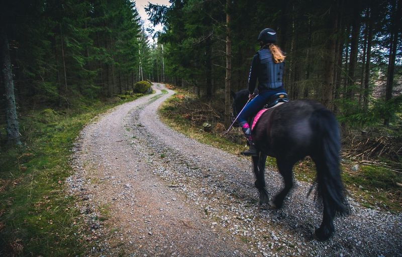 Rear View Of Woman Riding Horse On Gravel Road Amidst Trees