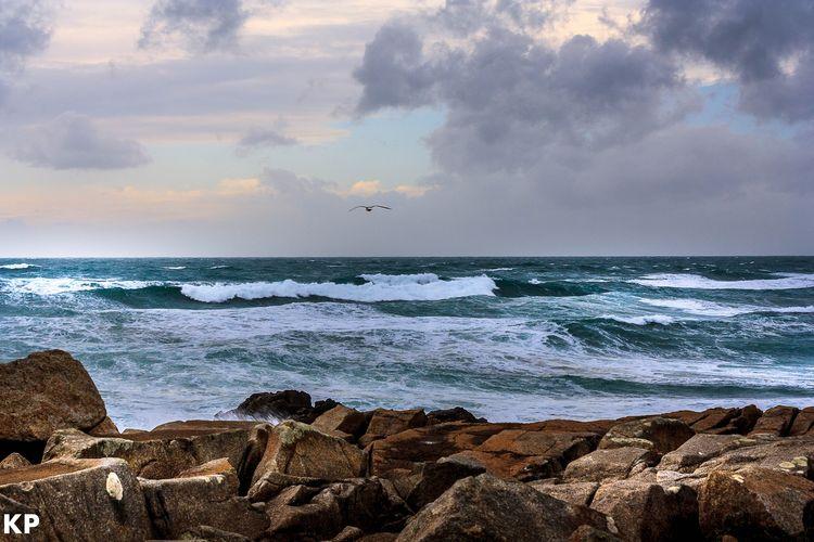 Sea Beach Horizon Over Water Sunset Nature Water Cloud - Sky Wave Bird Sea Life Day Travel Destinations
