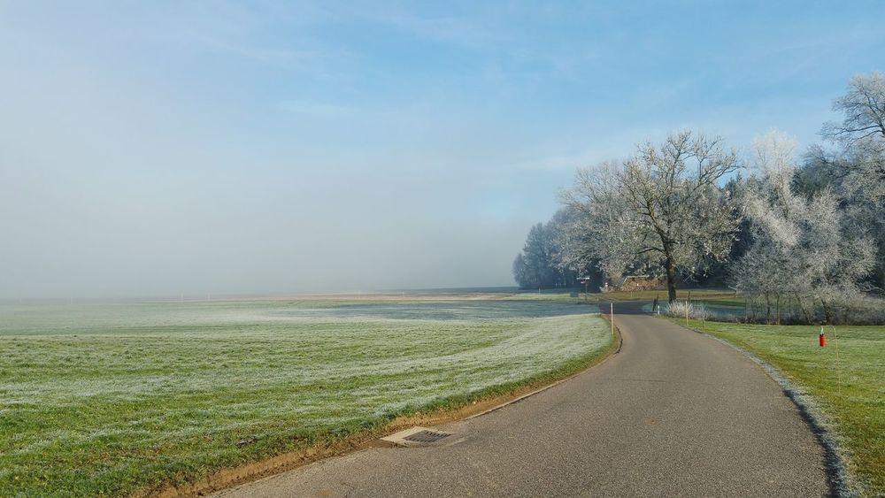 Foggy Morning Foggy Day Foggy Landscape Landscape_photography Street Blue Special Moments Thurgau Switzerland Premium Collection Kanton Thurgau