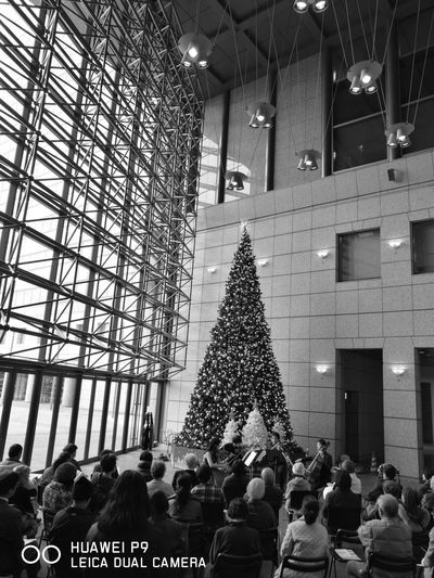 The Chrismas season in Yokohama business park Large Group Of People Arts Culture And Entertainment Men Women Crowd Indoors  Night People yokohama
