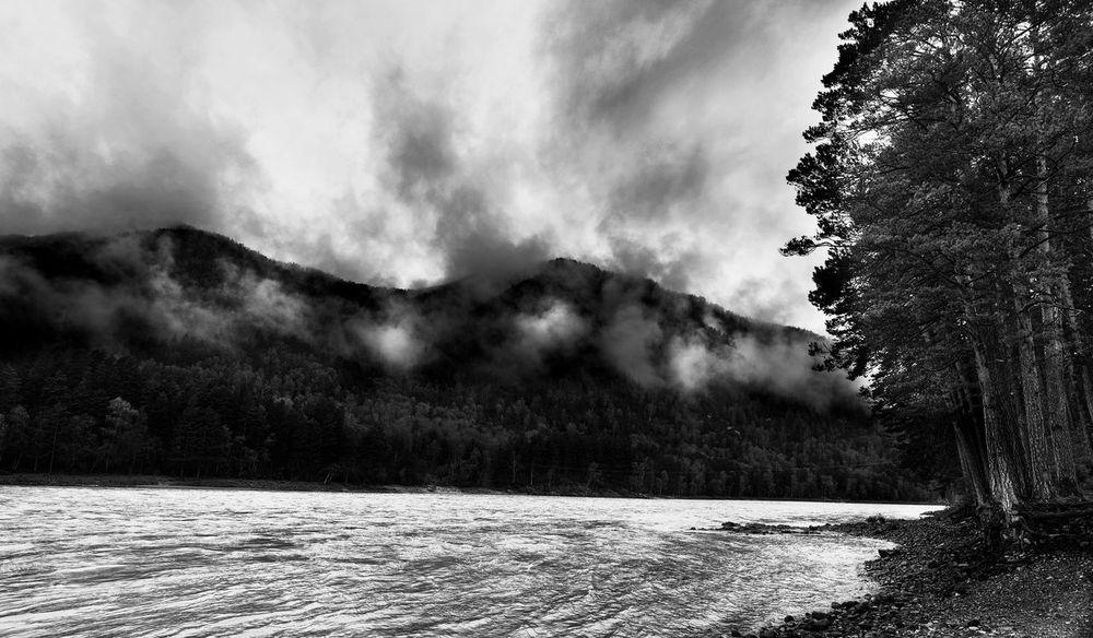 Altai Coast Fog Mountain River