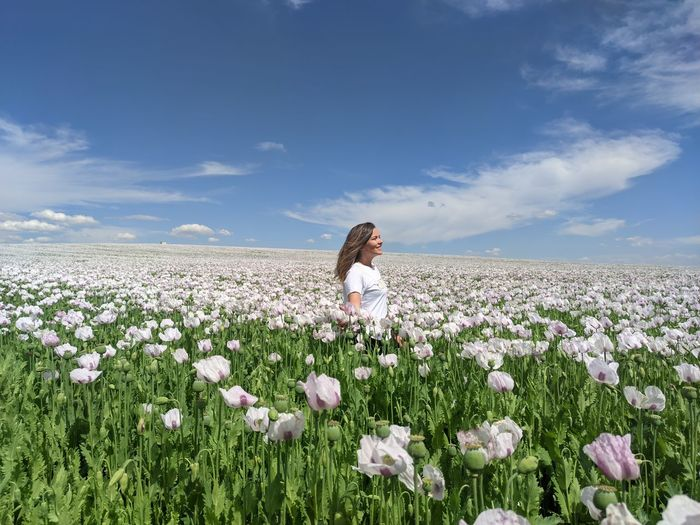 Person on flowering field against sky