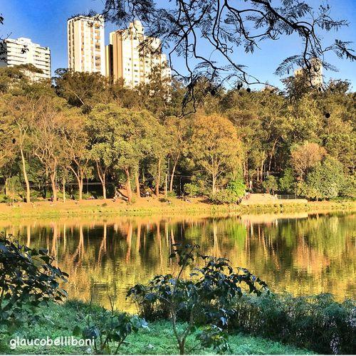 Aclimação Park Urban Landscape Sao Paulo - Brazil Saopaulo_originals Nature Water Parks Parkscapes Urban Nature Nature Urbanexploration l