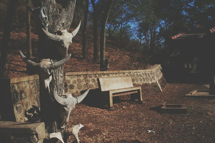 Empty chair, with empty soul Nature Getting Inspired Traveling The EyeEm Facebook Cover Challenge