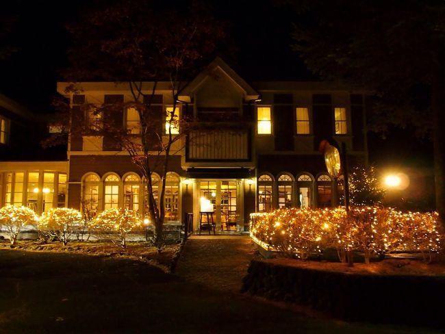 Merry Christmas! Christmas Christmas Lights Hanging Out