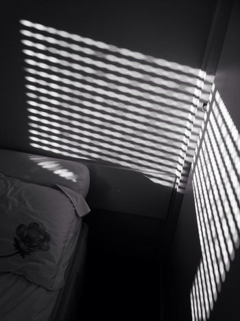 Light And Shadow Lights Morning Good Morning Today Morning Brazilian Gallery Showcase: February EyeEm Best Shots EyeEm Gallery Taking Photos Ey4photography Bnw_friday_eyeemchallenge Great Rays