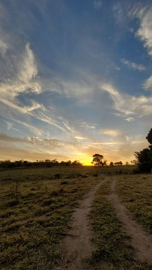 Dirt road amidst field against sky during sunset