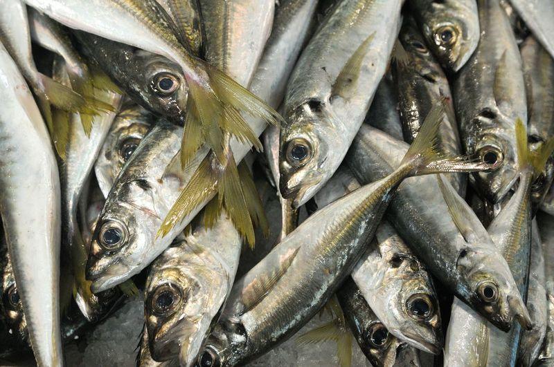 Full Frame Shot Of Fresh Fishes For Sale In Market