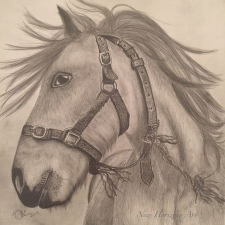 Drawing of a horse by me Drawing ArtWork Art #illustration #drawing #draw #tagsforlikes #picture #photography #artist #sketch #sketchbook #paper #pen #pencil #artsy #in MyArt Myartwork Pencil Drawing Horse Art Blackandwhite Pencil